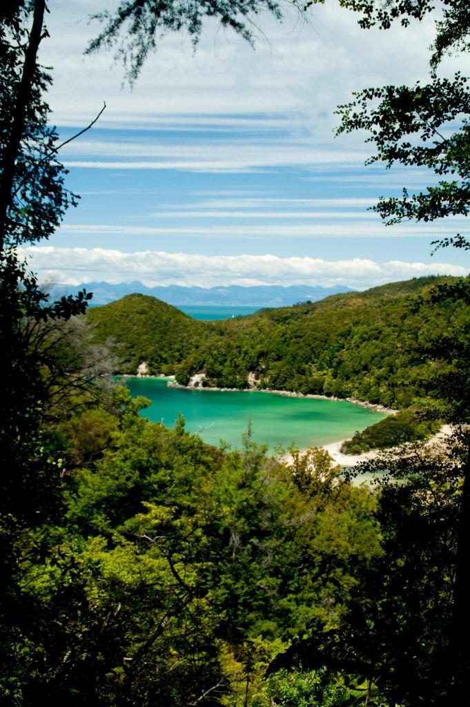 Mar, arena y bosque se unen en el parque Abel Tasman