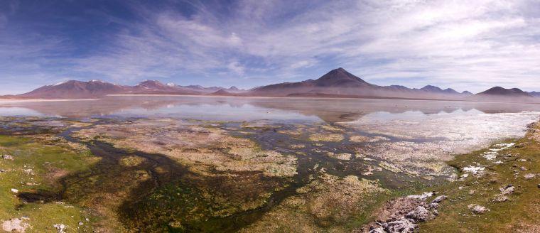 Nada más entrar en la reserva Eduardo Avaroa, te topas con esta inmensa y cristalina Laguna Blanca