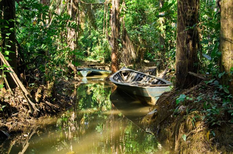 Reserva Tambopata en la selva amazónica de Perú