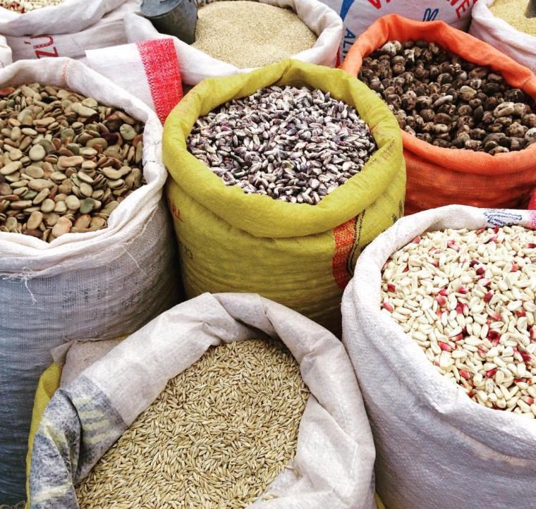 Perú es la región del mundo con mayor diversidad de tipos de maíz