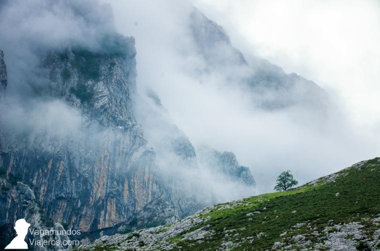 Conviene madrugar, pese a la niebla, para evitar las horas de más calor durante la ruta