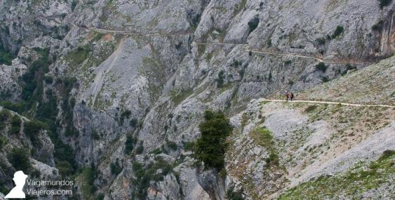 Una vez superados Los Collados, el camino sigue en descenso y continua prácticamente en llano durante el resto de la ruta del Cares hasta León