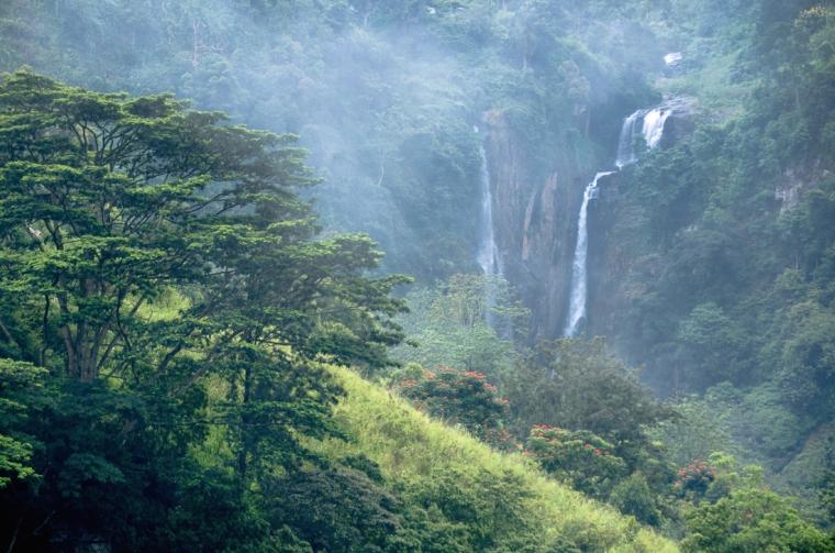 Las Tierras Altas en Sri Lanka envueltas en niebla y lluvia