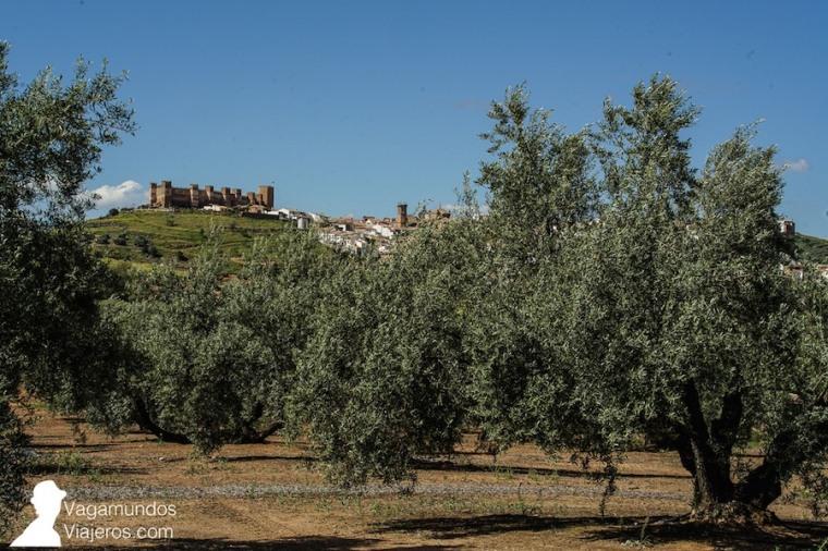 Vista panorámica del pueblo de Baños de la Encina desde la campiña de olivares que le rodea