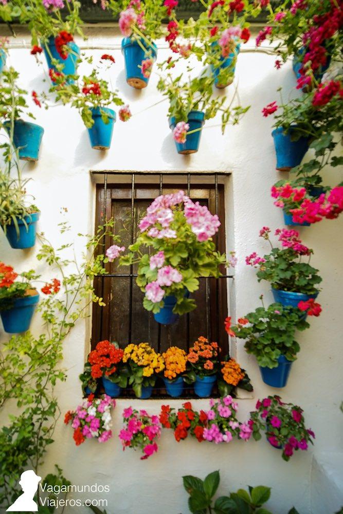 Reja adornada con flores y macetas en Córdoba: el concurso de rejas se celebra a la vez que el de patios