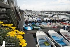 El puerto deportivo de Santander