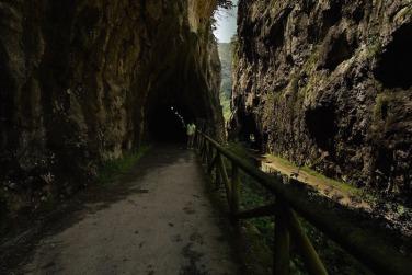 Desfiladero de Peñas Juntas en la Senda del Oso, Asturias