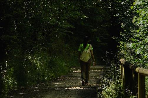 Puedes recorrer la Senda del Oso a pie o en bicicleta